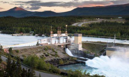 Helping Yukon River Salmon Make It Home